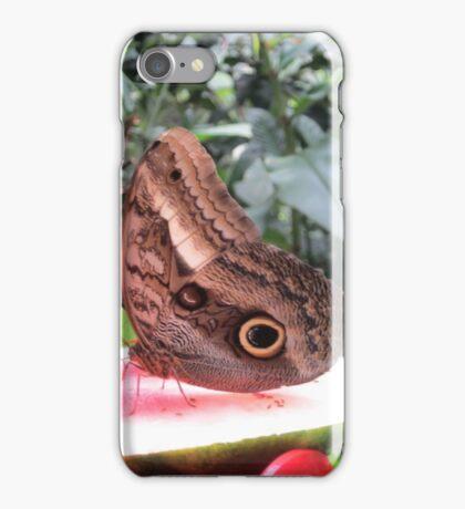 Butterflies  Iguazu Falls - Argentina iPhone Case/Skin