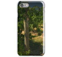 Looking along the vines iPhone Case/Skin
