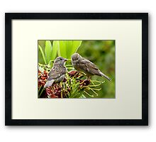 I Said...We're Leaving Home... - Sparrow Release - NZ Framed Print
