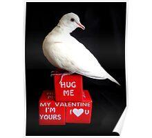 Hug Me My Valentine I'm Yours I♥U - White Dove - NZ Poster