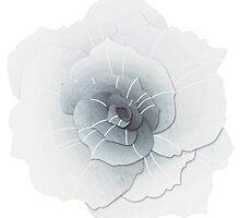 White Rose by byOli