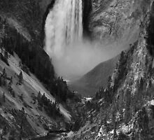 Lower Falls, Yellowstone NP, WY by halnormank