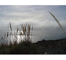 Fog Bank Photographic Print