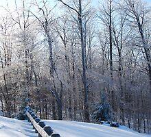Lasting Winter by Rita James