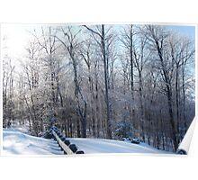 Lasting Winter Poster