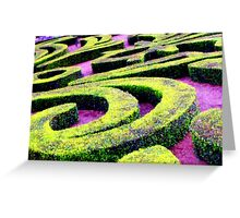 Topiary Maze Greeting Card