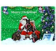 Happy Staffy Christmas! Photographic Print