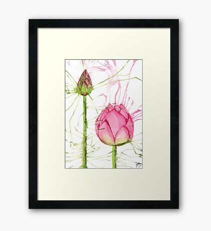 Splash Lotus and Bud Framed Print