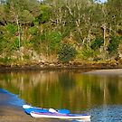 Late Afternoon at Lake Cathie by Penny Smith