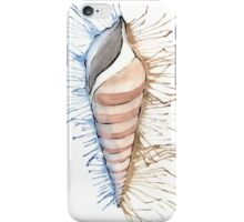 Splash Mollusc Shell iPhone Case/Skin