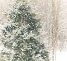 Winter Snow by Debbra Obertanec