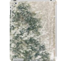 Winter Snow iPad Case/Skin