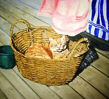 cushion in the basket by Alleycatsgarden