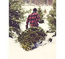 Christmas Tree Farm Photographic Print