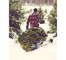 Christmas Tree Farm Photographic Print