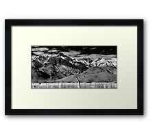 View from the Motel Framed Print