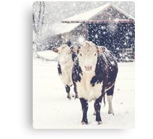 Winter Farm Canvas Print