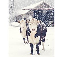 Winter Farm Photographic Print