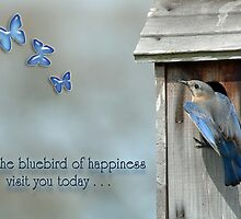 May the bluebird of happiness visit you today . . . by Bonnie T.  Barry