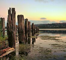 Why Wharf by Brad McEvoy