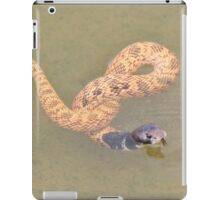 Shield Nose Snake - All Tied Up iPad Case/Skin