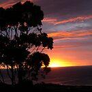 Sunset - Apollo Bay by oiseau