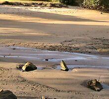 River beach at Burnie, Tasmania by Angy
