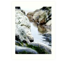 Rock Pool, Sand Bay Art Print