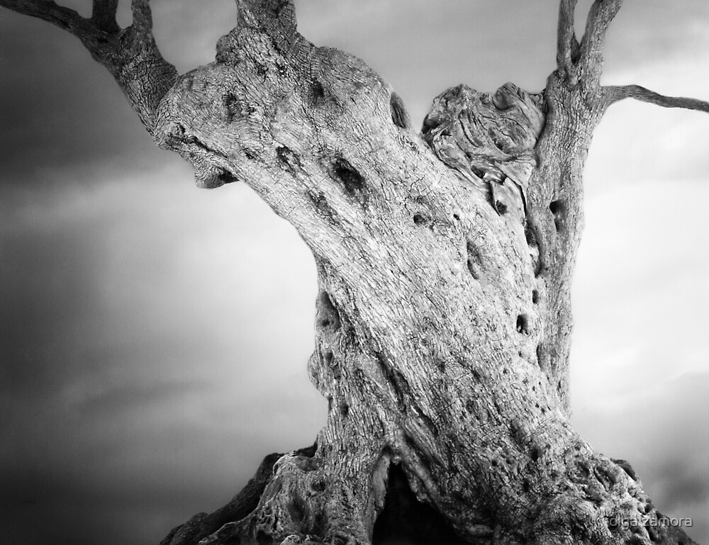 Chthonic Tree by olga zamora