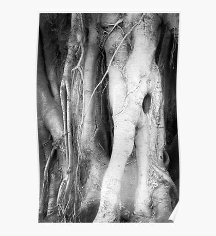 Eldritch Tree Poster