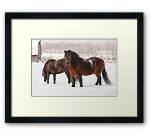 Winter Majesty Framed Print