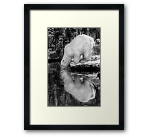 Mirrored Drink Framed Print