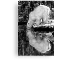 Mirrored Drink Canvas Print