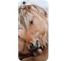 Horsing Around 2 iPhone Case/Skin