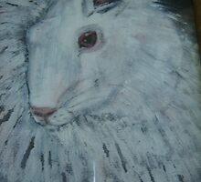 white angora rabbit by margaretfraser