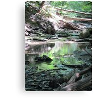 nature's avalanche Canvas Print