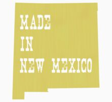 Made in New Mexico Kids Clothes