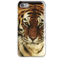 Tiger Tiger iPhone Case/Skin