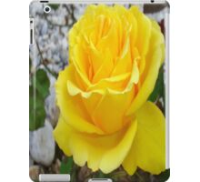 Beautiful Yellow Rose with Natural Garden Background iPad Case/Skin