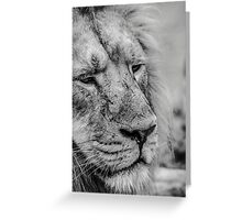 Face Of Thought Greeting Card