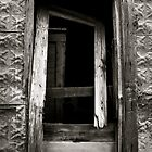 Door by acerny