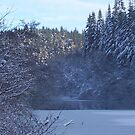 Staindale Lake in Winter by Edward Denyer