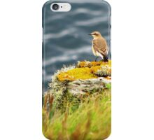 Cornish Wheatear iPhone Case/Skin