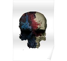 Awesome Painted Skull Poster
