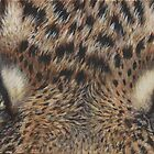Through The Eyes of A Leopard by artbyakiko