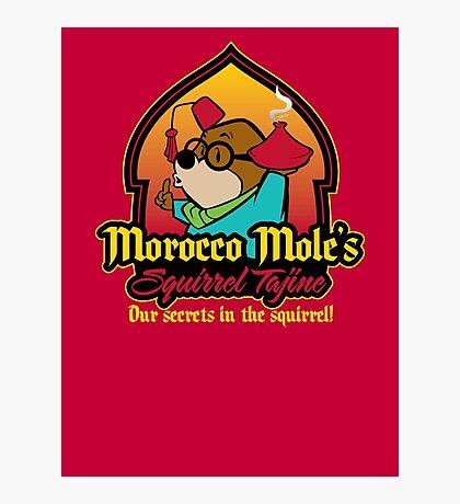 Morocco Mole's Squirrel Tajine Photographic Print