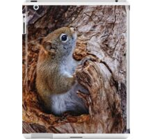 Red Squirrel - Ottawa, Ontario iPad Case/Skin