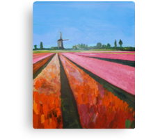 Holland, Tulip Fields Canvas Print