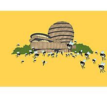 guggen hives Photographic Print