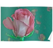 Pink And Aqua Rose Delight Poster